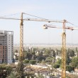 Stok fotoğraf: Construction site with tower cranes