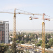 Foto Stock: Construction site with tower cranes