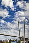 Big suspension bridge — Foto de Stock