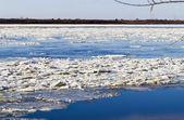 Ice drift — Stock Photo