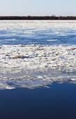 дрейфа льда — Стоковое фото