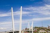 Grand pont de suspension — Photo