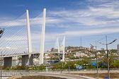 большой висячий мост — Стоковое фото