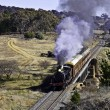 Restored steam locomotive travels through countrside — Stock Photo
