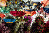 Coloured umbrellas form ceiling for flower display — Stock Photo