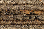 Wood planks on side of barn — Stock Photo