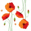 Red poppies back — Stock Vector