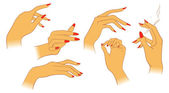 Vector women hands — Stock Vector