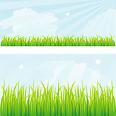 Vector illustration of Summer grass — Stock Vector
