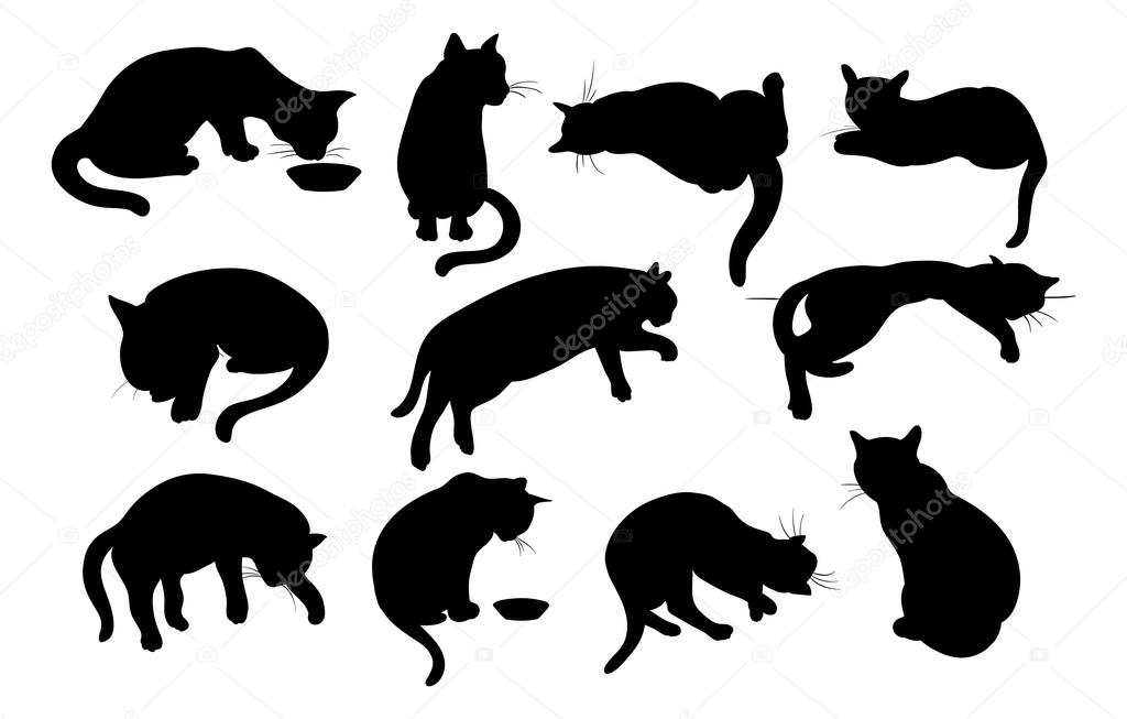 Vector illustration of Cats Silhouette set  Stock Vector #13717244