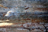 Old rusted corrugated iron — Stock Photo