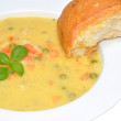 Creamy Country Vegetable Soup — Stock Photo #41834037
