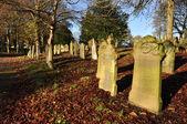 Jesień cmentarz — Zdjęcie stockowe