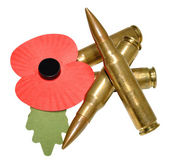 Remembrance Day Poppy And Bullets — Stock Photo