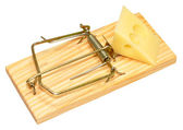 Mouse Trap And Cheese — Stock Photo