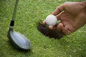 Positioning golf ball on tee — Stockfoto