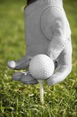 Golf ball on tee — Stockfoto