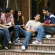 Group of college students — Stock Photo #39455929