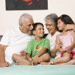 Stock Photo: Grandparents and grandchildren