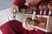 Man playing the sitar — Stock Photo