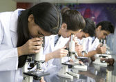 Students looking at slides with microscopes — Foto de Stock
