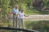Old couple having a walk — Stock Photo