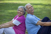 Old couple doing exercises — Foto Stock