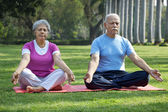 Senior couple doing yoga — Stock Photo