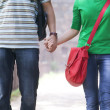 Couple holding hands in a park — Stock Photo #51102587