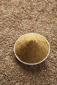 Cumin powder and cumin seeds — Stock Photo