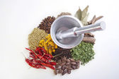 Spices with mortar and pestle — Stock Photo