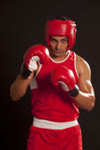 Indian boxer — Stock Photo