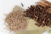 Ingredients for garam masala , indian spice mix — Stock Photo