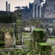 Romantic view of the Roman Forum — Stock Photo