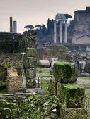浪漫的景色的罗马论坛 — 图库照片