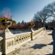 Snow on Bow Bridge — Stock Photo