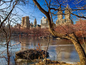 Frozen Lake in Central Park — Stock Photo