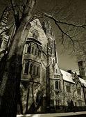 耶鲁大学在黑色和白色 — 图库照片