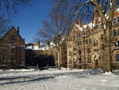Old Yale Campus — Stock Photo