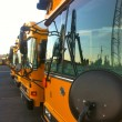 School Bus Line — Stock Photo #12885582