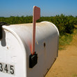 Old Mailbox — Stock Photo #12885610