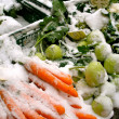 Farmer's Market Snow — Stock Photo #14095982