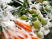 Farmer's Market Snow — Stock Photo