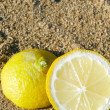Sliced Lemon in Sand — Stock Photo #18825679