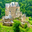 Burg Eltz Center — Stock Photo #28016557