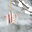 Winter decoration — Stock Photo #19385841