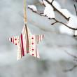 Winter decoration — Stock Photo