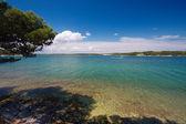 Croatia - Adriatic beautiful coast landscape in Istria. — Stock Photo