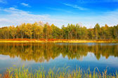 Autumn landscape on the lake. — Stock Photo
