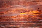 Texture of wood. — Stock Photo